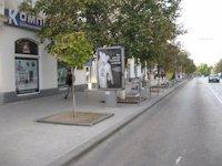 Ситилайт №11254 в городе Севастополь (АР Крым), размещение наружной рекламы, IDMedia-аренда по самым низким ценам!