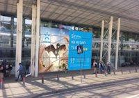 Брандмауэр №137362 в городе Львов (Львовская область), размещение наружной рекламы, IDMedia-аренда по самым низким ценам!