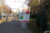 Ситилайт №147346 в городе Черновцы (Черновицкая область), размещение наружной рекламы, IDMedia-аренда по самым низким ценам!