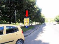 Ситилайт №153921 в городе Ровно (Ровенская область), размещение наружной рекламы, IDMedia-аренда по самым низким ценам!