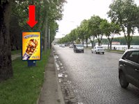 Ситилайт №154475 в городе Тернополь (Тернопольская область), размещение наружной рекламы, IDMedia-аренда по самым низким ценам!