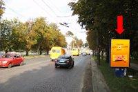 Ситилайт №154478 в городе Тернополь (Тернопольская область), размещение наружной рекламы, IDMedia-аренда по самым низким ценам!