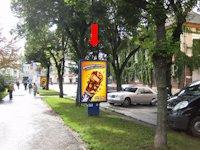 Ситилайт №154505 в городе Тернополь (Тернопольская область), размещение наружной рекламы, IDMedia-аренда по самым низким ценам!
