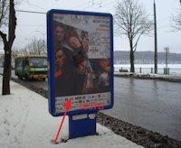 Ситилайт №155044 в городе Тернополь (Тернопольская область), размещение наружной рекламы, IDMedia-аренда по самым низким ценам!