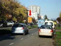 Ситилайт №156381 в городе Ужгород (Закарпатская область), размещение наружной рекламы, IDMedia-аренда по самым низким ценам!
