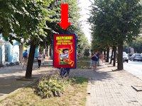 Ситилайт №160256 в городе Черновцы (Черновицкая область), размещение наружной рекламы, IDMedia-аренда по самым низким ценам!