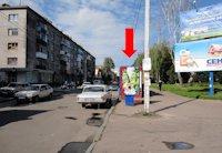 Ситилайт №173159 в городе Житомир (Житомирская область), размещение наружной рекламы, IDMedia-аренда по самым низким ценам!