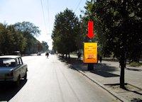 Ситилайт №173169 в городе Житомир (Житомирская область), размещение наружной рекламы, IDMedia-аренда по самым низким ценам!