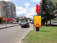 Ситилайт №173195 в городе Житомир (Житомирская область), размещение наружной рекламы, IDMedia-аренда по самым низким ценам!