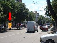 Ситилайт №173202 в городе Житомир (Житомирская область), размещение наружной рекламы, IDMedia-аренда по самым низким ценам!