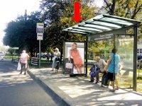 Ситилайт №177555 в городе Львов (Львовская область), размещение наружной рекламы, IDMedia-аренда по самым низким ценам!