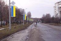 Холдер №179884 в городе Лубны (Полтавская область), размещение наружной рекламы, IDMedia-аренда по самым низким ценам!
