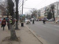 Ситилайт №192501 в городе Житомир (Житомирская область), размещение наружной рекламы, IDMedia-аренда по самым низким ценам!