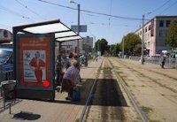 Ситилайт №202195 в городе Харьков (Харьковская область), размещение наружной рекламы, IDMedia-аренда по самым низким ценам!