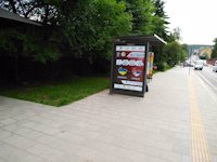 Остановка №206508 в городе Львов (Львовская область), размещение наружной рекламы, IDMedia-аренда по самым низким ценам!