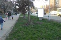 Ситилайт №211771 в городе Ужгород (Закарпатская область), размещение наружной рекламы, IDMedia-аренда по самым низким ценам!