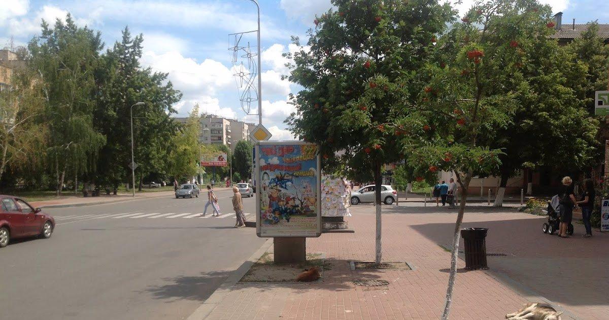 Ситилайт №221062 в городе Вишневое (Киевская область), размещение наружной рекламы, IDMedia-аренда по самым низким ценам!