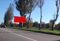 Билборд №221088 в городе Каменское(Днепродзержинск) (Днепропетровская область), размещение наружной рекламы, IDMedia-аренда по самым низким ценам!