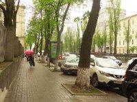 Ситилайт №222263 в городе Киев (Киевская область), размещение наружной рекламы, IDMedia-аренда по самым низким ценам!