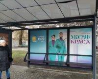 Остановка №230648 в городе Киев (Киевская область), размещение наружной рекламы, IDMedia-аренда по самым низким ценам!