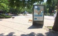 Скролл №232354 в городе Николаев (Николаевская область), размещение наружной рекламы, IDMedia-аренда по самым низким ценам!