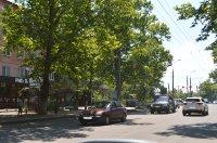 Ситилайт №235129 в городе Херсон (Херсонская область), размещение наружной рекламы, IDMedia-аренда по самым низким ценам!