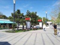 Ситилайт №235640 в городе Одесса (Одесская область), размещение наружной рекламы, IDMedia-аренда по самым низким ценам!