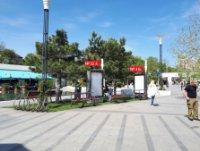 Ситилайт №235657 в городе Одесса (Одесская область), размещение наружной рекламы, IDMedia-аренда по самым низким ценам!