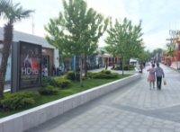 Ситилайт №235676 в городе Одесса (Одесская область), размещение наружной рекламы, IDMedia-аренда по самым низким ценам!