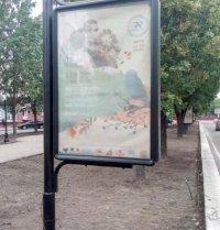 Ситилайт №236132 в городе Чернигов (Черниговская область), размещение наружной рекламы, IDMedia-аренда по самым низким ценам!