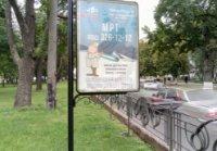 Ситилайт №236162 в городе Чернигов (Черниговская область), размещение наружной рекламы, IDMedia-аренда по самым низким ценам!