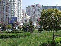 Скролл №238282 в городе Киев (Киевская область), размещение наружной рекламы, IDMedia-аренда по самым низким ценам!