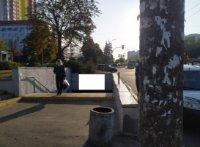 Бэклайт №239081 в городе Киев (Киевская область), размещение наружной рекламы, IDMedia-аренда по самым низким ценам!