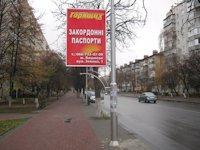 Ситилайт №66425 в городе Вишневое (Киевская область), размещение наружной рекламы, IDMedia-аренда по самым низким ценам!