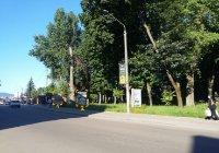 Ситилайт №91072 в городе Дрогобыч (Львовская область), размещение наружной рекламы, IDMedia-аренда по самым низким ценам!